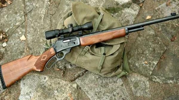 حکم جلب شکارچیان خرگوش در گناوه صادر شد,اخبار اجتماعی,خبرهای اجتماعی,محیط زیست