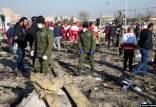 سقوط هواپیمای اوکراینی,اخبار سیاسی,خبرهای سیاسی,دفاع و امنیت