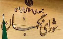بودجه شورای نگهبان,اخبار سیاسی,خبرهای سیاسی,اخبار سیاسی ایران