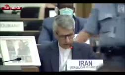 فیلم/ برداشتن عکس سردار قاسم سلیمانی توسط پلیس امنیت سازمان ملل