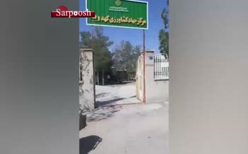 فیلم/ اعتراض دامداران به همراه گوسفندانشان در یکی از روستاهای استان یزد