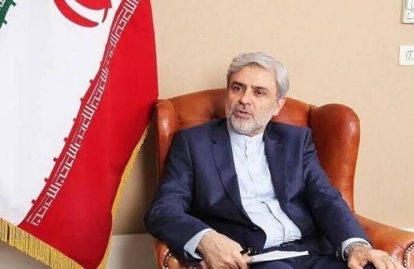 سفیر جمهوری اسلامی ایران در پاکستان,اخبار سیاسی,خبرهای سیاسی,سیاست خارجی