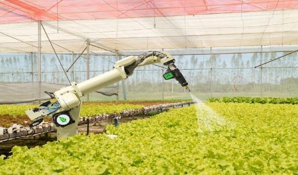 ارزیابی سلامت خاک با هوش مصنوعی,اخبار علمی,خبرهای علمی,طبیعت و محیط زیست