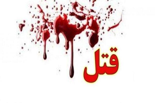 قتل مادر و کودک یکساله در بهارستان تهران,اخبار حوادث,خبرهای حوادث,جرم و جنایت