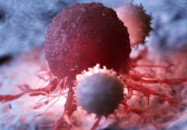 ژن عامل بروز و گسترش سرطان,اخبار پزشکی,خبرهای پزشکی,تازه های پزشکی