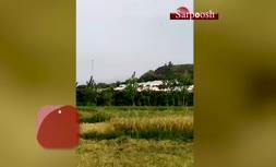 فیلم/ پنهان کردن صدها ماشین صفر پشت یک تپه توسط ایران خودرو
