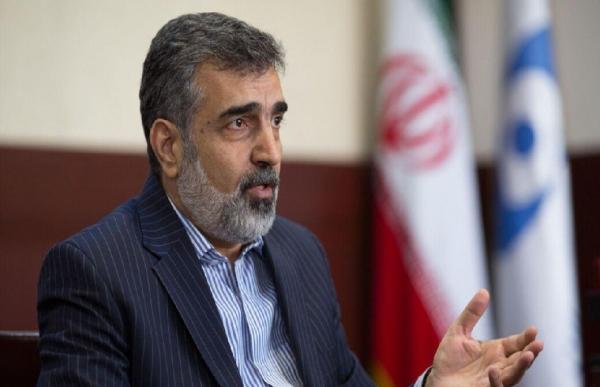 توضیحات کمالوندی درباره سفرمدیرکل آژانس بین المللی اتمی به ایران/ ظریف و لودریان درباره برجام مذاکره کردند