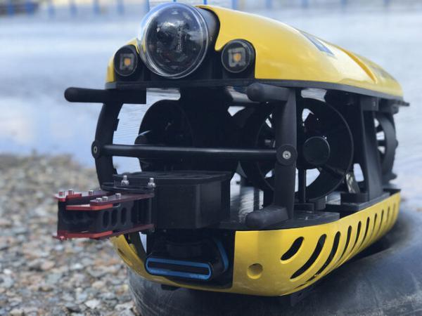 پاکسازی بستر دریا با ربات,اخبار علمی,خبرهای علمی,طبیعت و محیط زیست