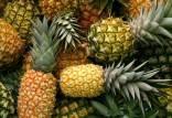 قیمت آناناس و میوه در بازار,اخبار اقتصادی,خبرهای اقتصادی,کشت و دام و صنعت