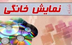 نظارت صداوسیما بر نمایش خانگی,اخبار فیلم و سینما,خبرهای فیلم و سینما,شبکه نمایش خانگی