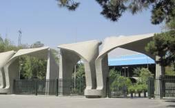 فرایند مصاحبه دکتری در دانشگاه تهران,نهاد های آموزشی,اخبار آزمون ها و کنکور,خبرهای آزمون ها و کنکور