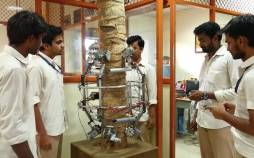 رباتی برای برای چیدن نارگیل,اخبار علمی,خبرهای علمی,اختراعات و پژوهش