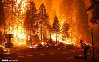 تصاویر شدت گرفتن آتش سوزی جنگل های کالیفرنیا,عکس های آتش سوزی جنگل های کالیفرنیا,تصاویر آتش سوزی در کالیفرنیا