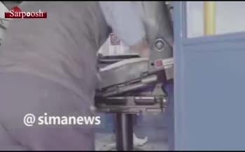 فیلم/ رکوردهای جديد گينس؛ از کوتاه ترين راننده اتوبوس تا دست دادن موش