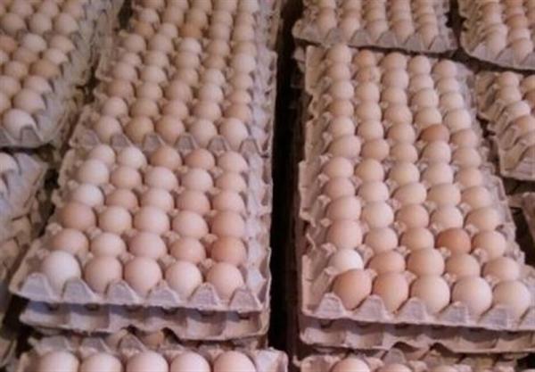 وعده ارزانی تخم مرغ بازهم عملی نشد/ قیمت هر شانه تخم مرغ در تهران ۳۵ هزار تومان!