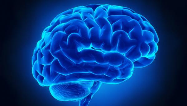 اصلاح سلولهای مغز با ابزاری جدید,اخبار پزشکی,خبرهای پزشکی,تازه های پزشکی