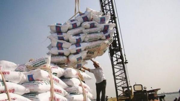 عدم توانایی مردم برای خرید برنج,اخبار اقتصادی,خبرهای اقتصادی,کشت و دام و صنعت