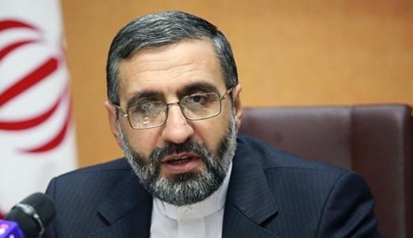 اسماعیلی: سخنان سخنگوی دولت ناشی از بی اطلاعی از اصلاحیه قانون مجازات اسلامی است