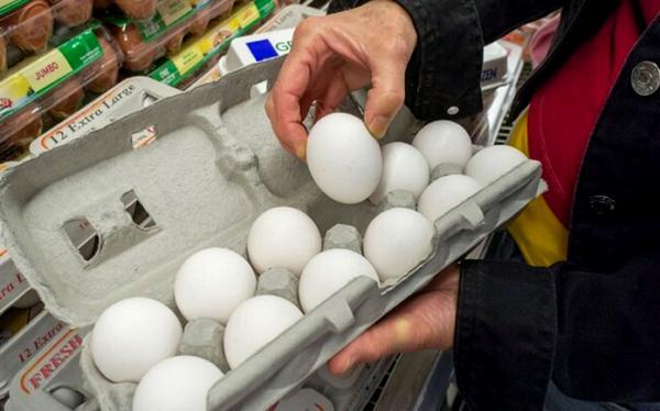 قیمت تخم مرغ در بازار,اخبار اقتصادی,خبرهای اقتصادی,کشت و دام و صنعت