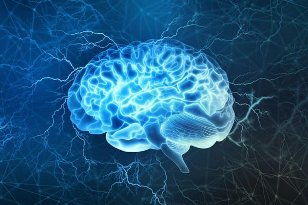 ارتباط چاقی و انعطاف پذیری مغز,اخبار پزشکی,خبرهای پزشکی,تازه های پزشکی