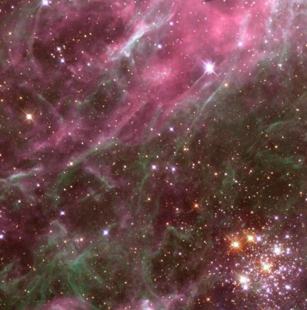 خوشه ستاره ای درسحابی رتیل,اخبار علمی,خبرهای علمی,نجوم و فضا