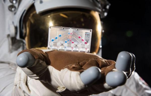 کرو-1,اخبار علمی,خبرهای علمی,نجوم و فضا