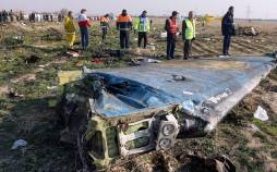 سقوط هواپیما اوکراینی,اخبار سیاسی,خبرهای سیاسی,سیاست خارجی