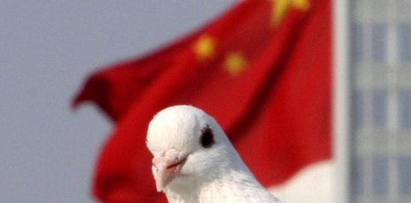 کبوتر نامهرسان در چین
