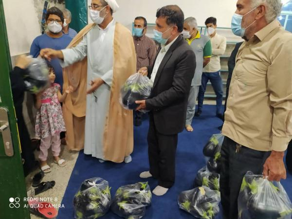 توزیع بادمجان به عنوان بسته کمک معیشتی,اخبار اجتماعی,خبرهای اجتماعی,شهر و روستا