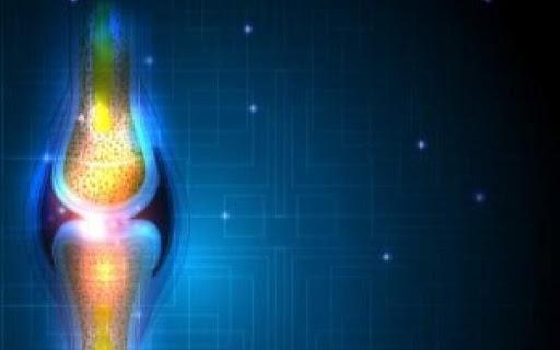 درمان اختلالات استخوان با کمک نوعی سلول,اخبار پزشکی,خبرهای پزشکی,تازه های پزشکی