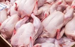 جدیدترین قیمت گوشت مرغ میوه