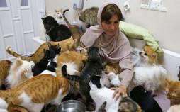 زنی صاحب سگ و گربه در عمان