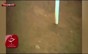 فیلم/ نخستین نمونه برداری از سطح کره ماه