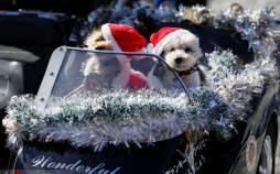 تصاویر بابانوئلها در رژه موتوری,عکس های کریسمسی در زاپن,تصاویر رژه بابانوئل ها در کشور ژاپن