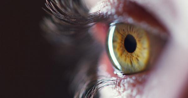 سلولهای بنیادی جسد,استفاده از سلولهای بنیادی جسد برای درمان نابینایی