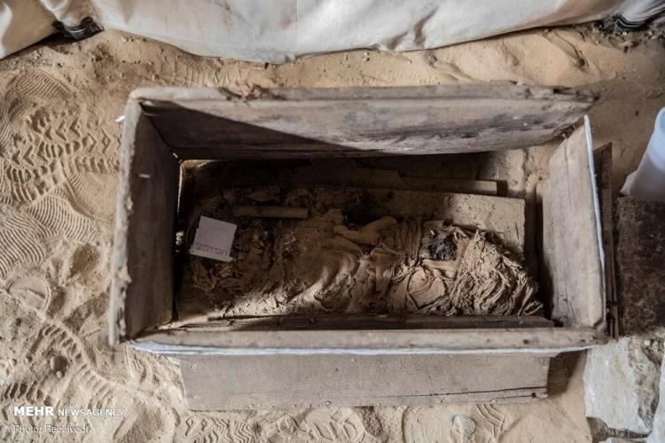 تصاویر کشف بزرگ باستانی دیگر در سقاره مصر,عکس های آثار باستانی مصر,تصاویر کشف یک گنجینه جدید شامل تابوتهای باستانی در مصر