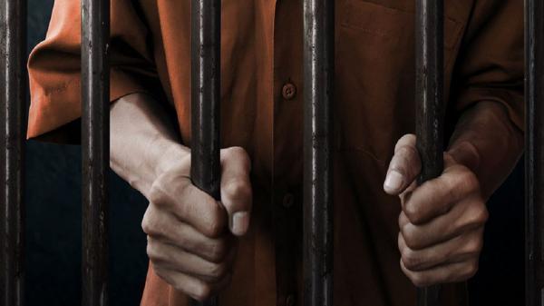 سلبریتی ها در زندان,انجام جرم توسط سلبریتی ها