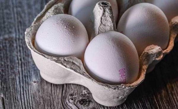 تخم مرغ,افزایش قیمت تخم مرغ