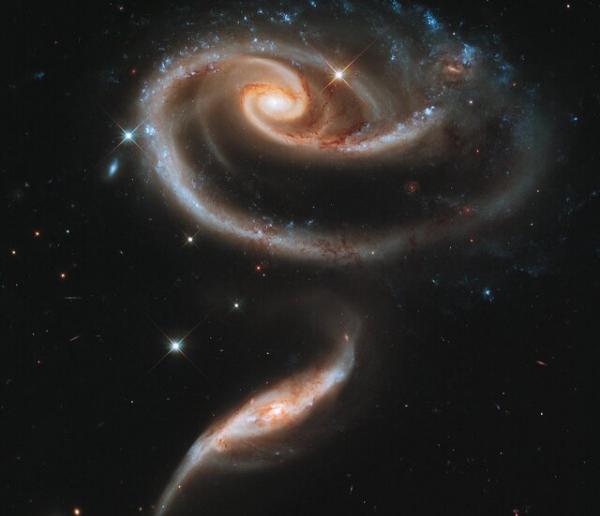 تلسکوپ فضایی هابل,شاخه گل