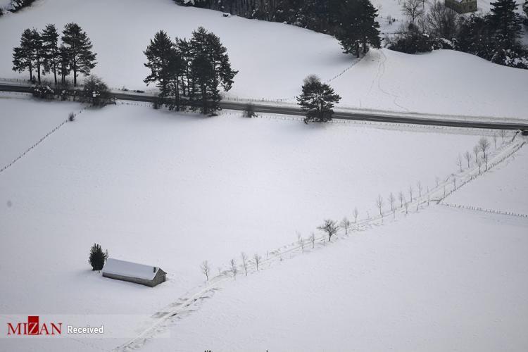 تصاویر زمستان در سراسر جهان,عکس حیوانات در زمستان,تصاویری از زمستان در جهان