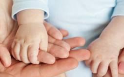 سلامت باروری زوجین,نقش تغذیه بر سلامت باروری