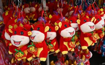 تصاویر جشن سال نو چینی,عکس های جشن سال نو چینی,تصاویری از جشن سال نو در چین