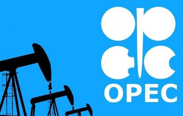 افزایش قیمت نفت و اجلاس اوپک,قیمت نفت