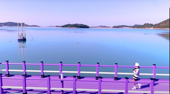 جزیرهای به رنگ بنفش,جزیره بنفش