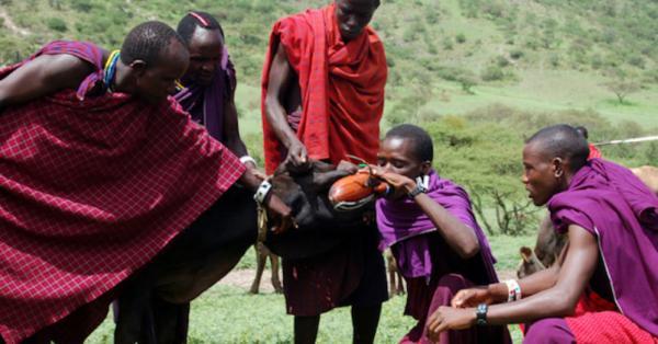 آداب و رسوم عجیب و غریب در میان برخی قبایل آفریقایی