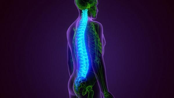 استفاده از سلولهای بنیادی برای درمان آسیبهای نخاعی,درمان آسیب نخاعی
