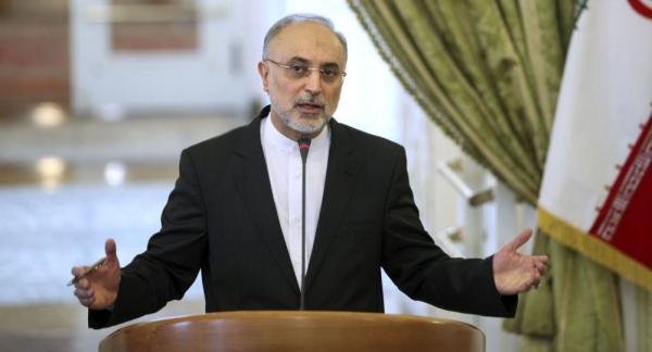 علی اکبر صالحی,رییس سازمان انرژی اتمی