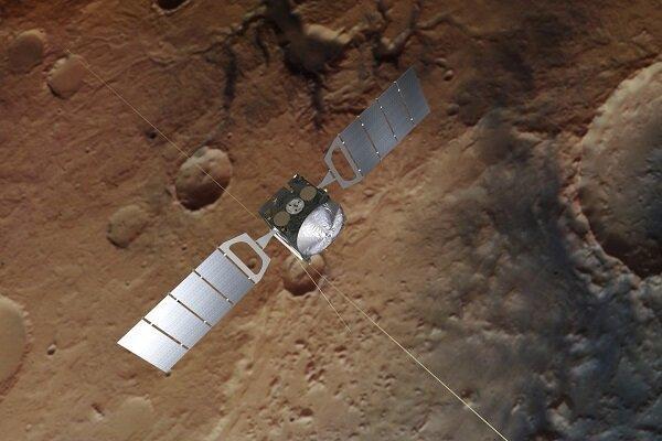 مریخ, ریز ارگانیسم های موجود در زمین