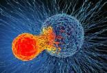 حمله نانوقطرات به یک تومور,نانوقطرات