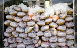 کمبود مرغ و روغن در کشور,افزایش مرغ و روغن
